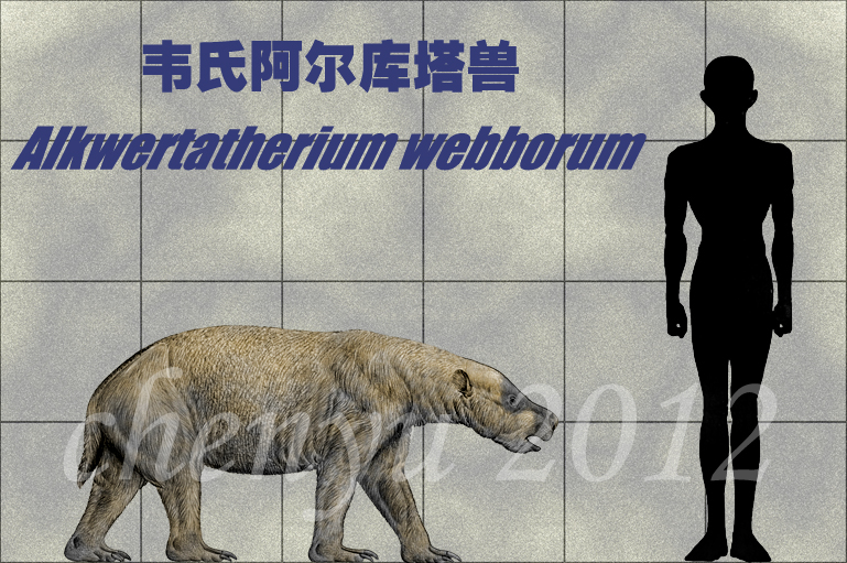Alkwertatherium