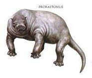 Prorastomus