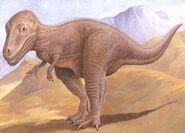01Albertosaurus