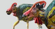Recreacion-artistica-de-tlatolophus-galorum-por-luis-v-rey 66788dbc 1200x630.jpeg