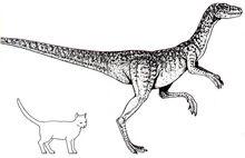 2-laevisuchus.jpg
