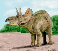 Nedoceratops BW