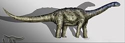Aelosaurus