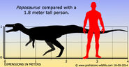 Poposaurus-sil