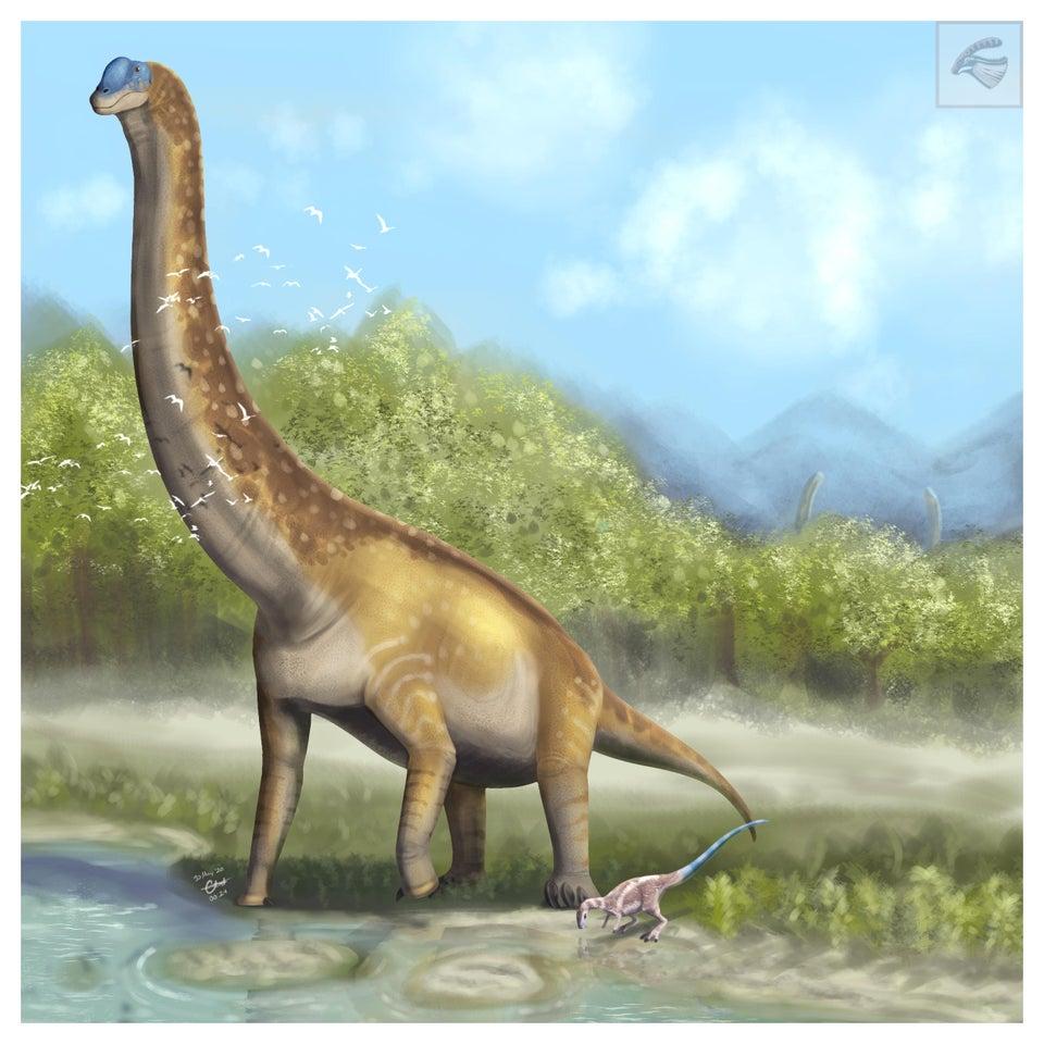 Brachiosaurus Wiki Prehistorico Fandom En este juego usted alimentará a un dinosaurio que sea vegetariano. brachiosaurus wiki prehistorico fandom