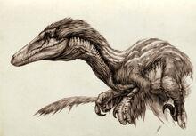 Austroraptor by dyingquasar-d4h8gwg.jpg