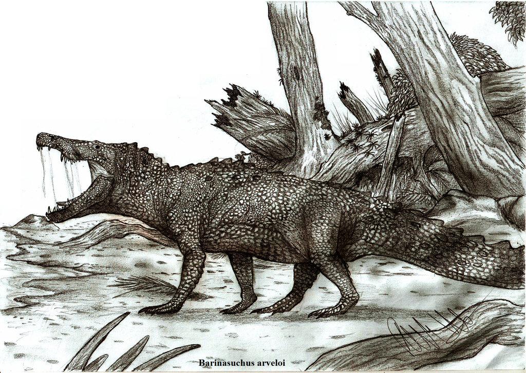 Barinasuchus