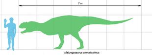 Majungasaurus scale1