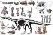 4-Figure2-1
