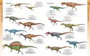 Libro de los dinosaurios05