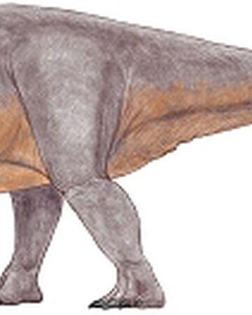 Rhoetosaurus.jpg