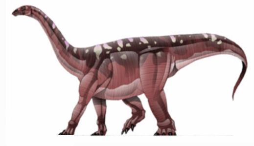 Blikanasaurus