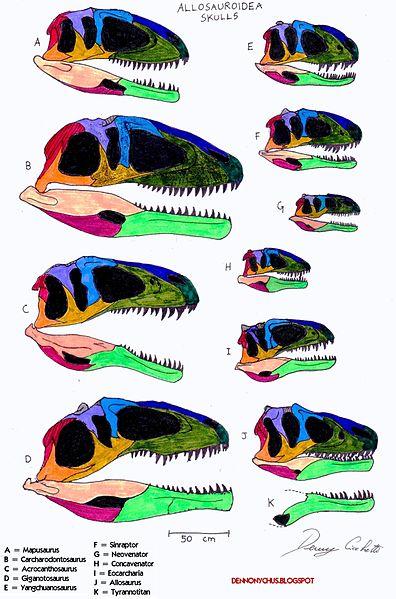 Allosauroidea