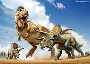 T rex vs Triceratops
