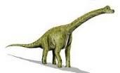 Brachiosaurus2