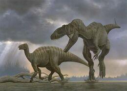 Carcharodontosaurus and Iguanodontid