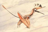 Darwinopterus