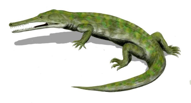 Хампсозавр