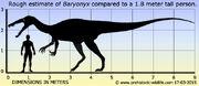 Baryonyx-size.jpg