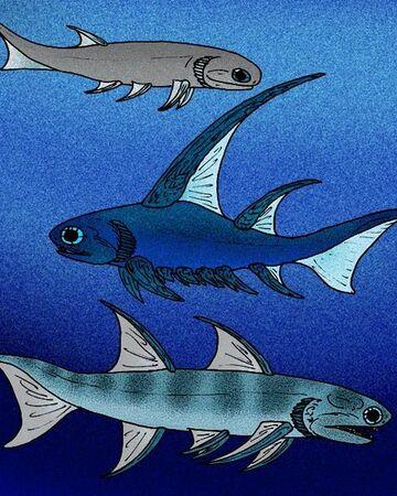 Mesacanthus, Parexus, and Ischnacanthus.jpg