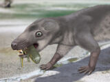 Хтонозавр