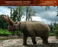 Arsinoitherium zitteli by romanyevseyev-d8c92dh