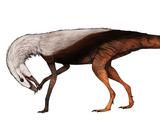Игнотозавр