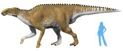 Kamuysaurus-japonicus-fr-ATD