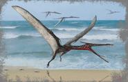 Moganopterus 1