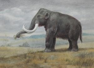 Хазарский мамонт