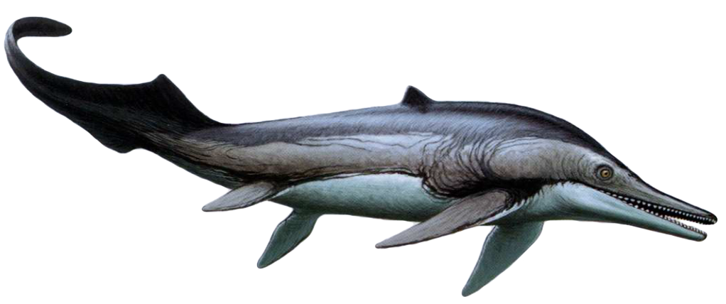 Барракудазавр