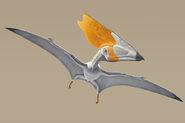 Pterodactylus-thalassodromeus