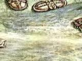 Акадагност