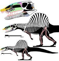 Аризонозавр9
