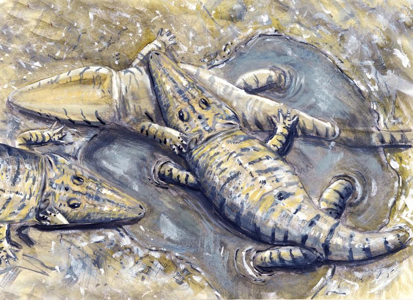 Станоцефалозавр