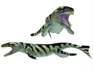 Dakosaurus-