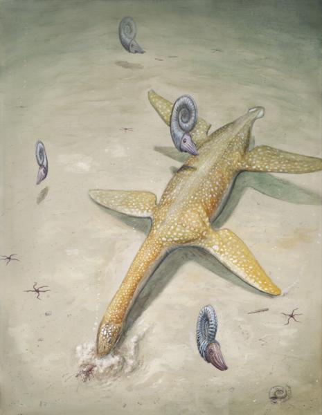 Арминизавр