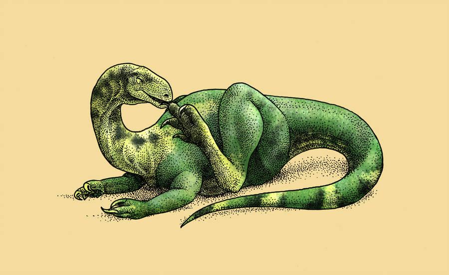 Багуалозавр