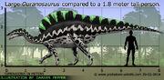 Ouranosaurus-size.jpg