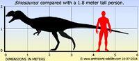 Sinosaurus-size 63ec
