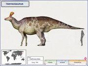 Циньтаозавр 5.jpg