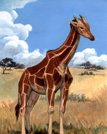 Giraffa Jumae by TORIMORRIS.png