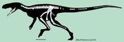 Staurikosaurus skeletal.jpg