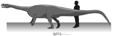 Fig 2 - Aardonyx life restoration by Matthew Bonnan.jpg
