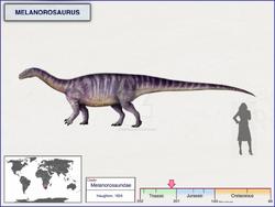 Melanorosaurus by cisiopurple-dcj3gfp