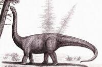 Австрозавр