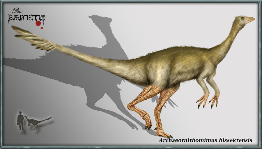 Archaeornithomimus bissektensi by karkemish00.jpg