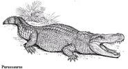 Purussaurus-1