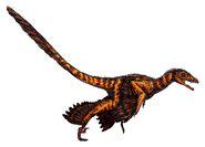 Sinornithosaurus (flipped)