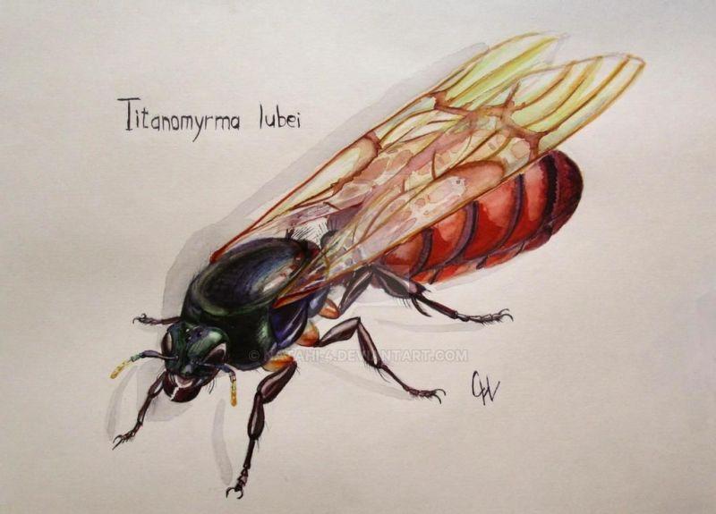 Титаномирма